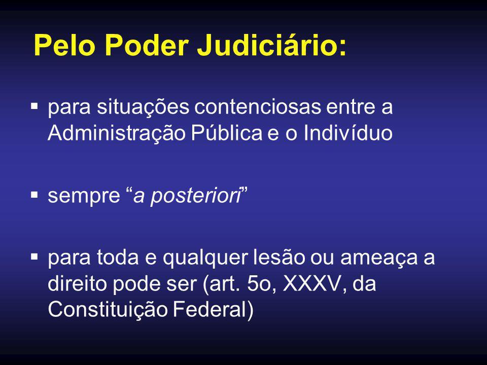 Pelo Poder Judiciário: