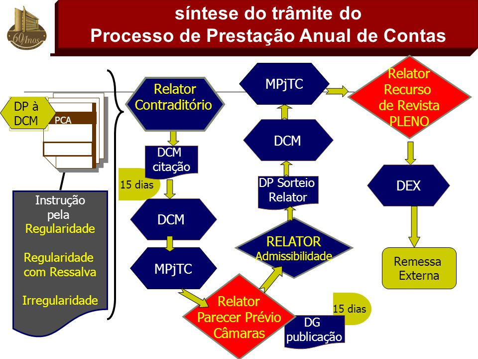 síntese do trâmite do Processo de Prestação Anual de Contas