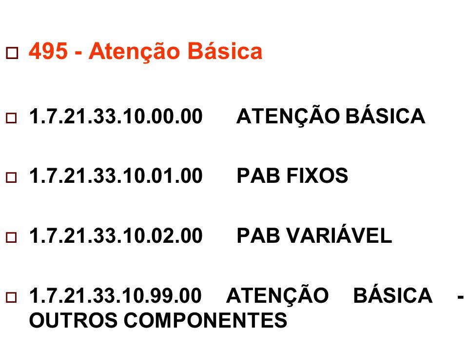 495 - Atenção Básica 1.7.21.33.10.00.00 ATENÇÃO BÁSICA