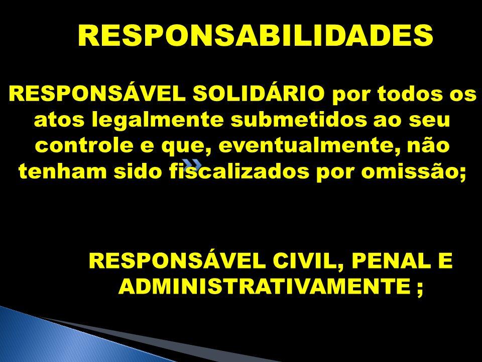 RESPONSÁVEL CIVIL, PENAL E ADMINISTRATIVAMENTE ;