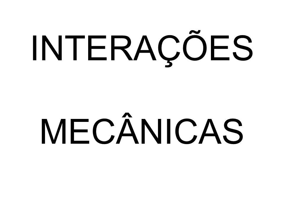 INTERAÇÕES MECÂNICAS