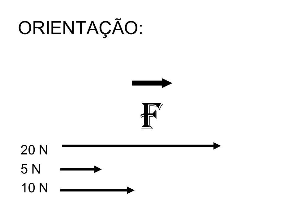 ORIENTAÇÃO: F 20 N 5 N 10 N