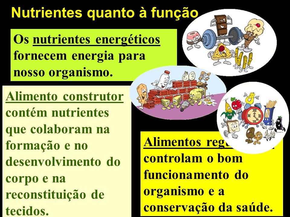 Nutrientes quanto à função