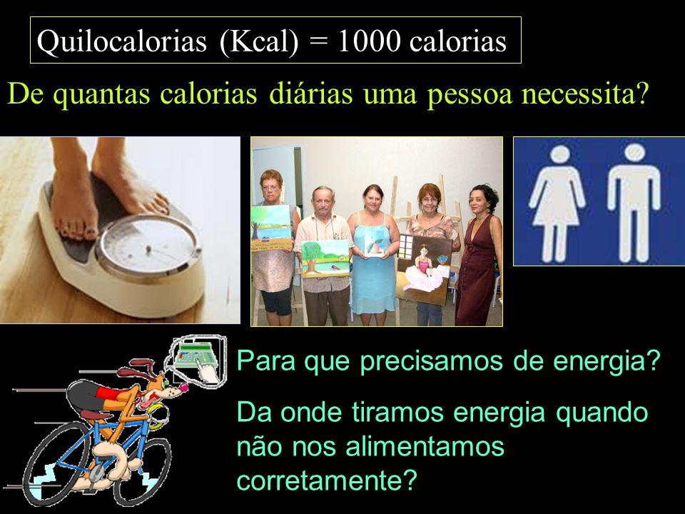 Quilocalorias (Kcal) = 1000 calorias