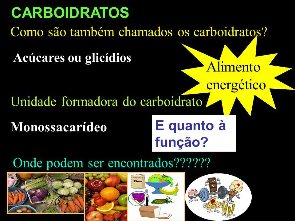 CARBOIDRATOS Alimento energético