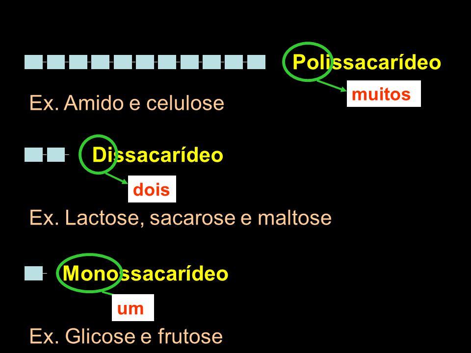 Ex. Lactose, sacarose e maltose