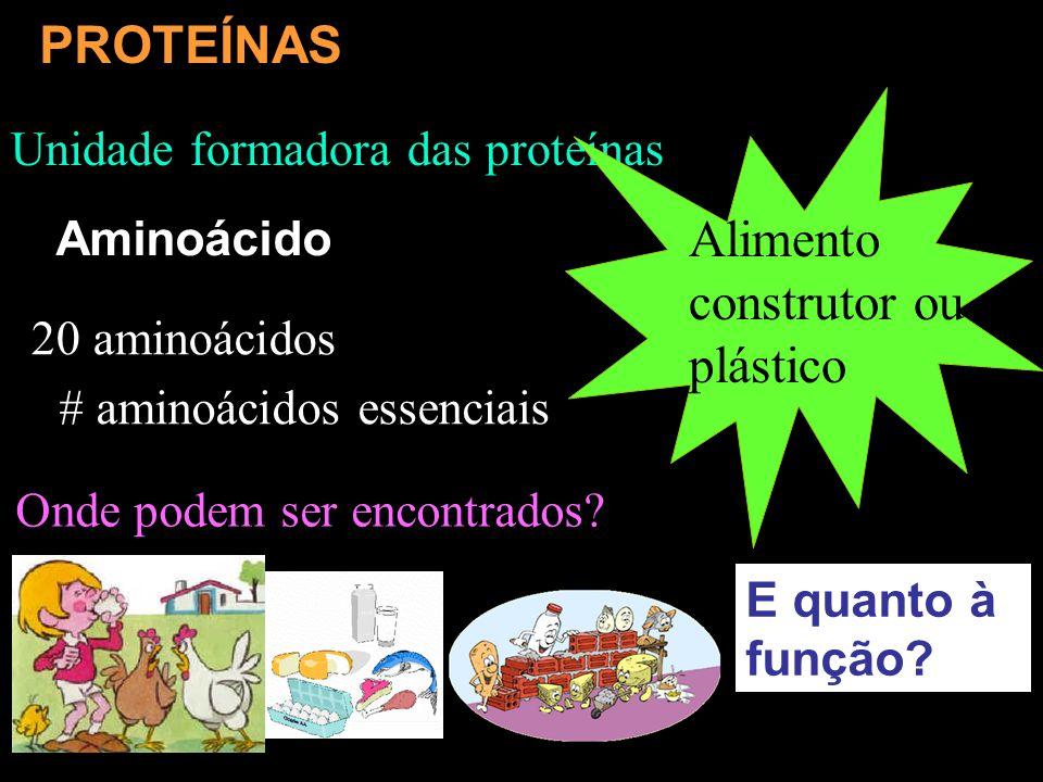 Alimento construtor ou plástico