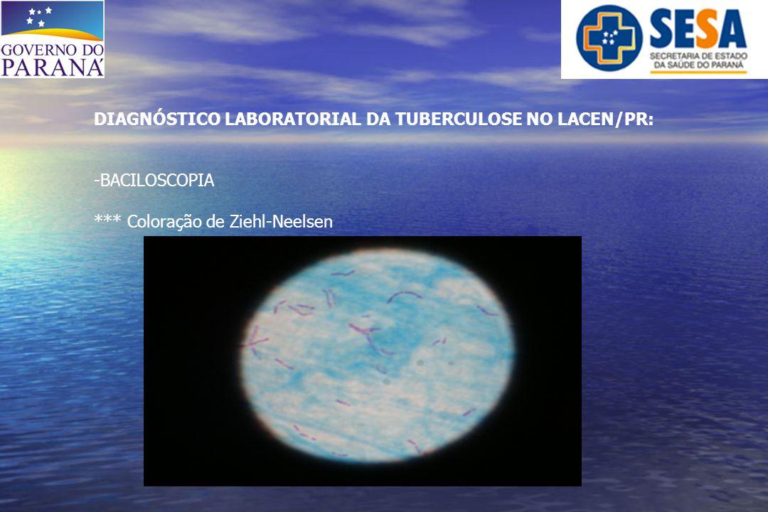 DIAGNÓSTICO LABORATORIAL DA TUBERCULOSE NO LACEN/PR: