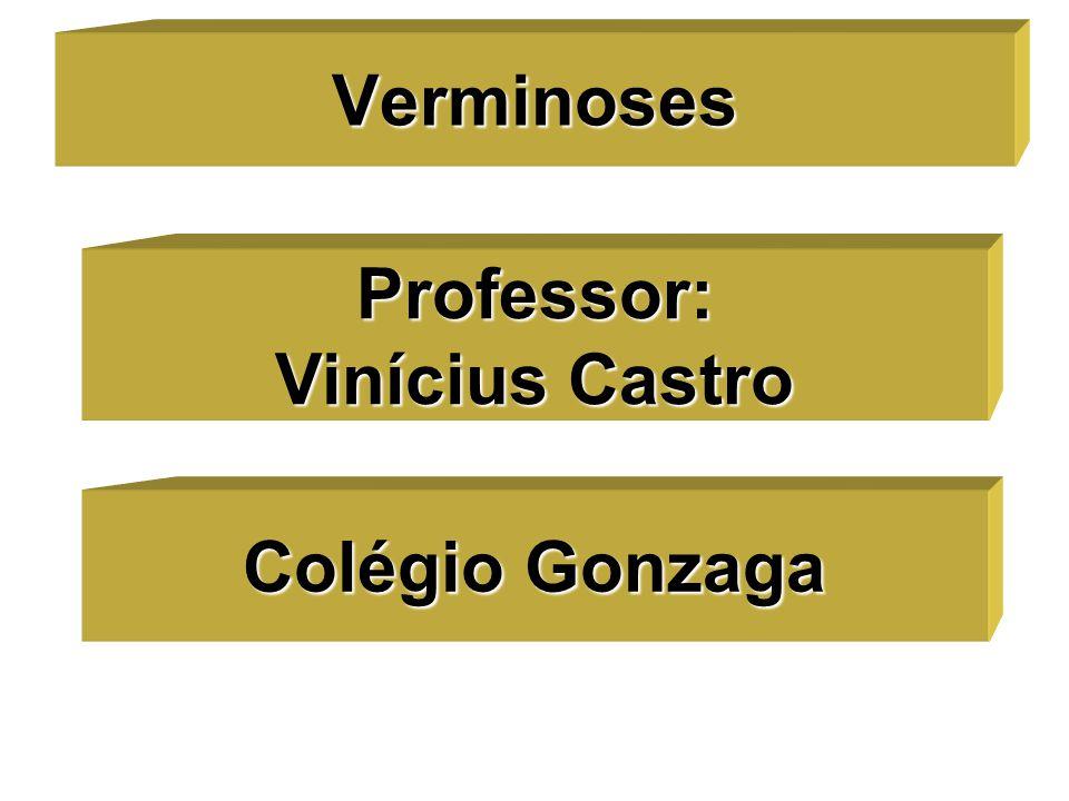 Verminoses Professor: Vinícius Castro Colégio Gonzaga