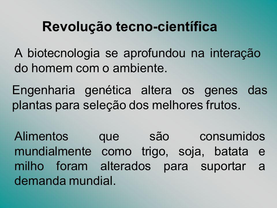 Revolução tecno-científica