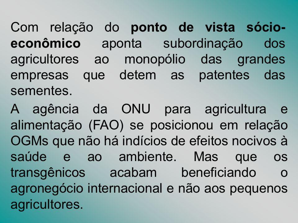 Com relação do ponto de vista sócio-econômico aponta subordinação dos agricultores ao monopólio das grandes empresas que detem as patentes das sementes.