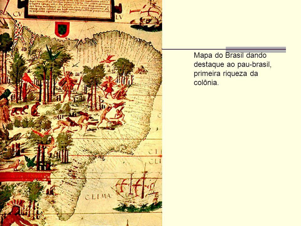 Mapa do Brasil dando destaque ao pau-brasil, primeira riqueza da colônia.