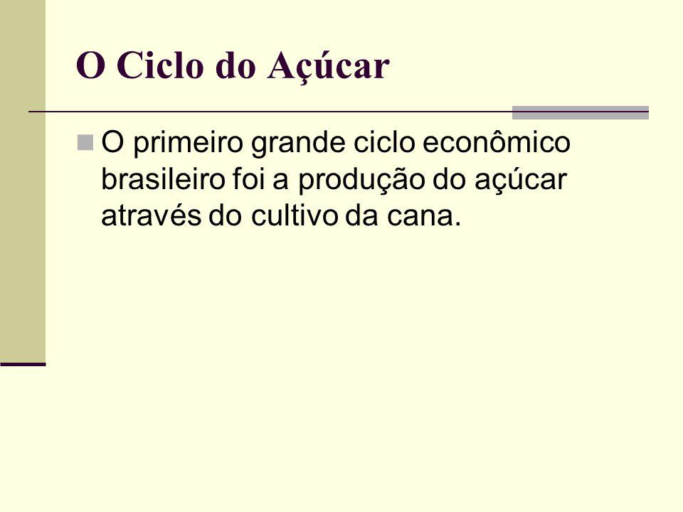 O Ciclo do Açúcar O primeiro grande ciclo econômico brasileiro foi a produção do açúcar através do cultivo da cana.