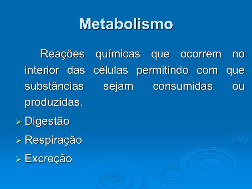 Metabolismo Reações químicas que ocorrem no interior das células permitindo com que substâncias sejam consumidas ou produzidas.