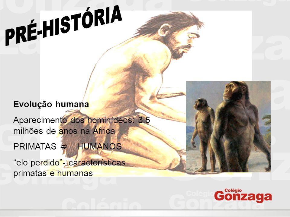 PRÉ-HISTÓRIA Evolução humana