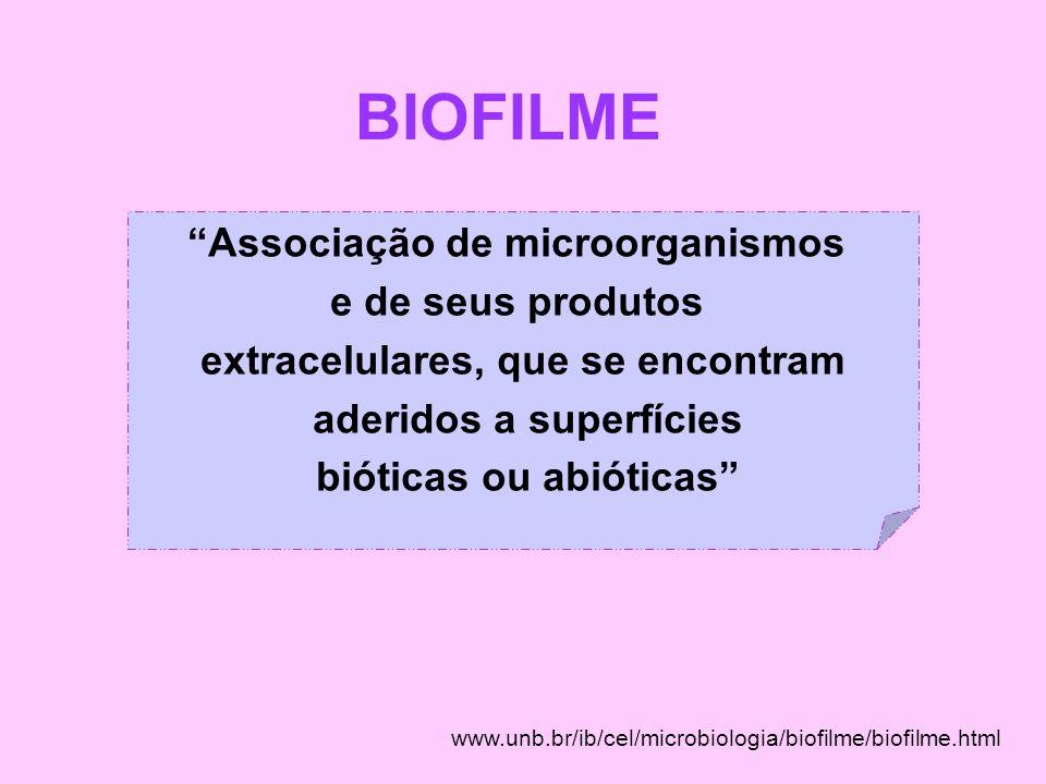 BIOFILME Associação de microorganismos e de seus produtos