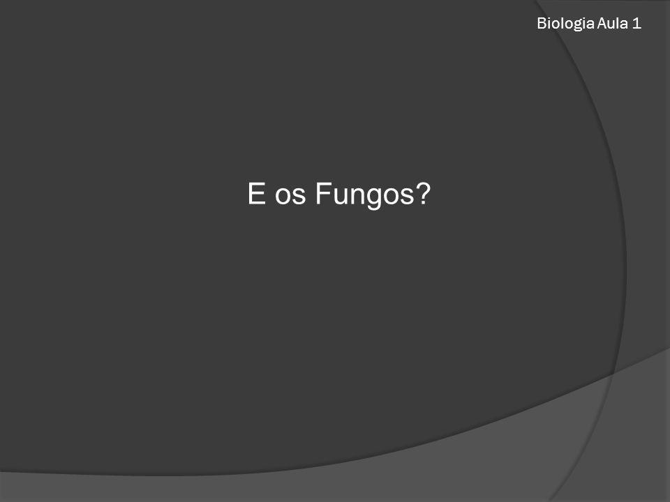 Biologia Aula 1 E os Fungos