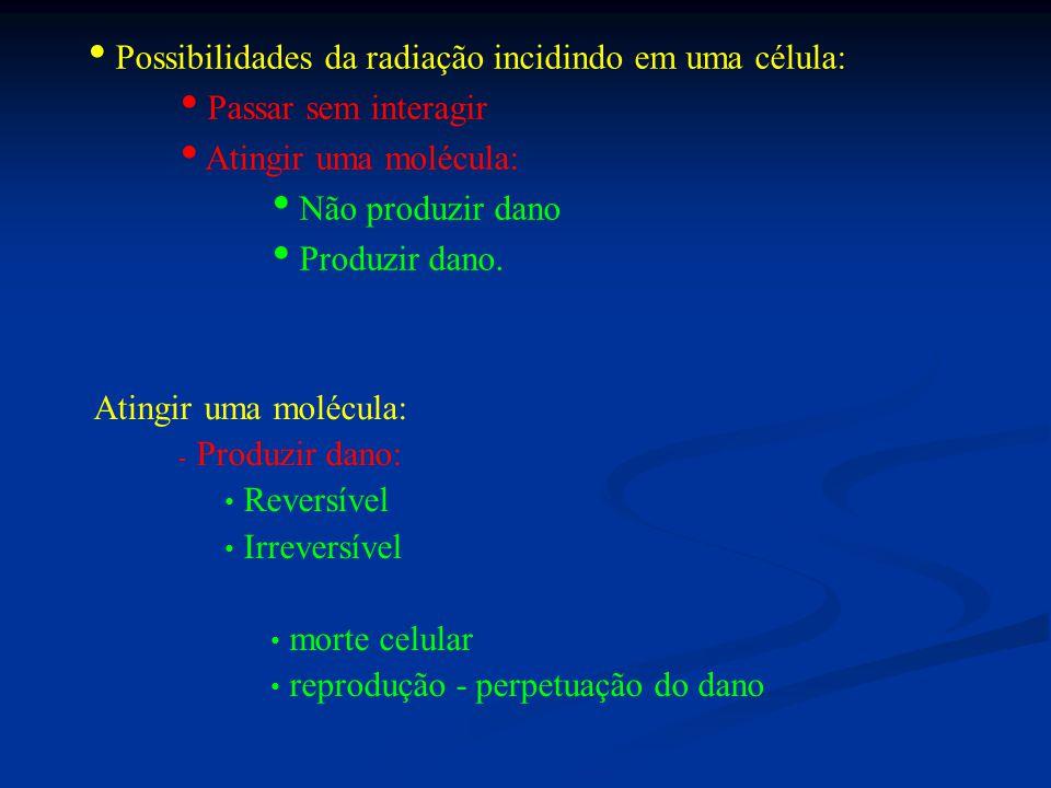 Possibilidades da radiação incidindo em uma célula: