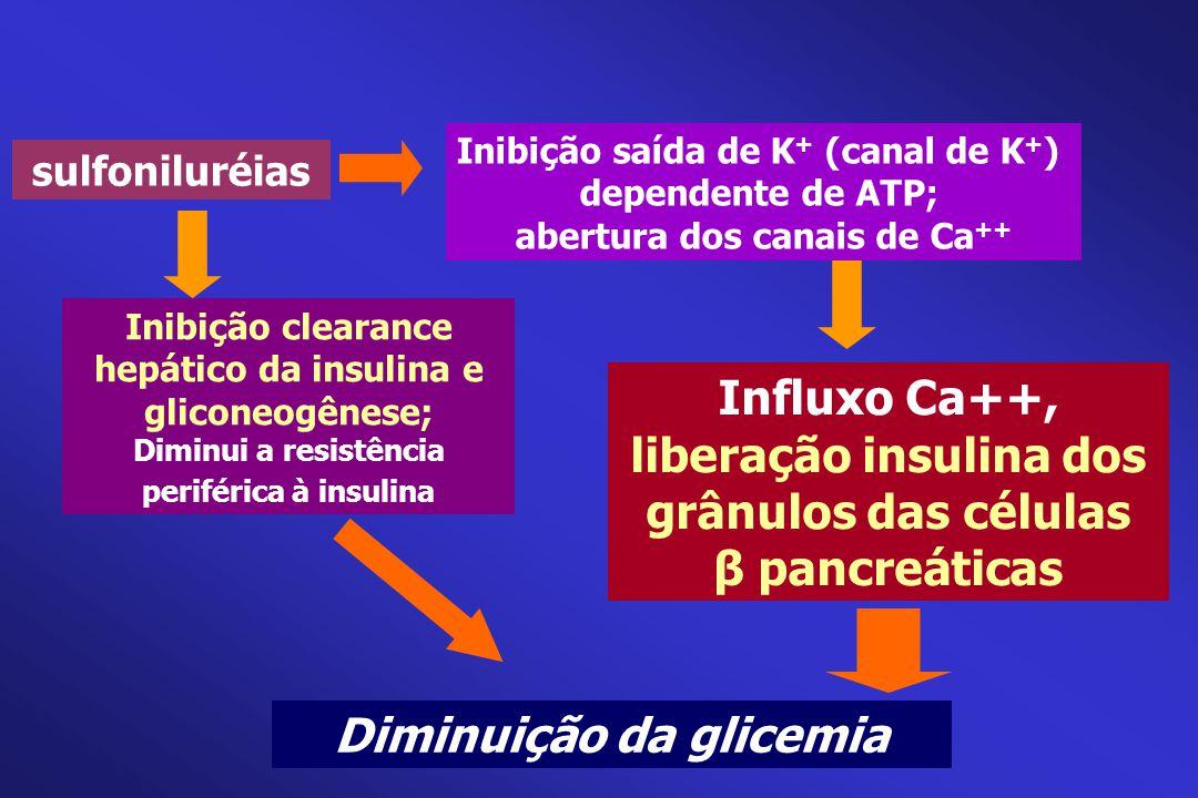 liberação insulina dos grânulos das células β pancreáticas