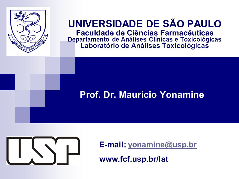 Prof. Dr. Mauricio Yonamine
