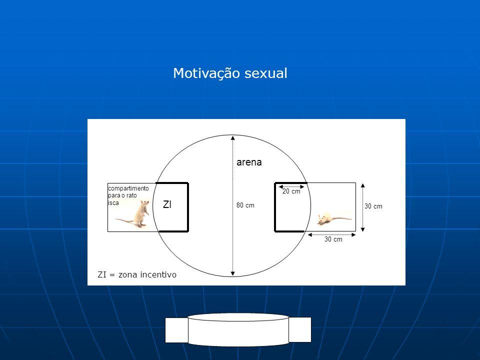 Motivação sexual arena ZI ZI = zona incentivo 20 cm 80 cm 30 cm