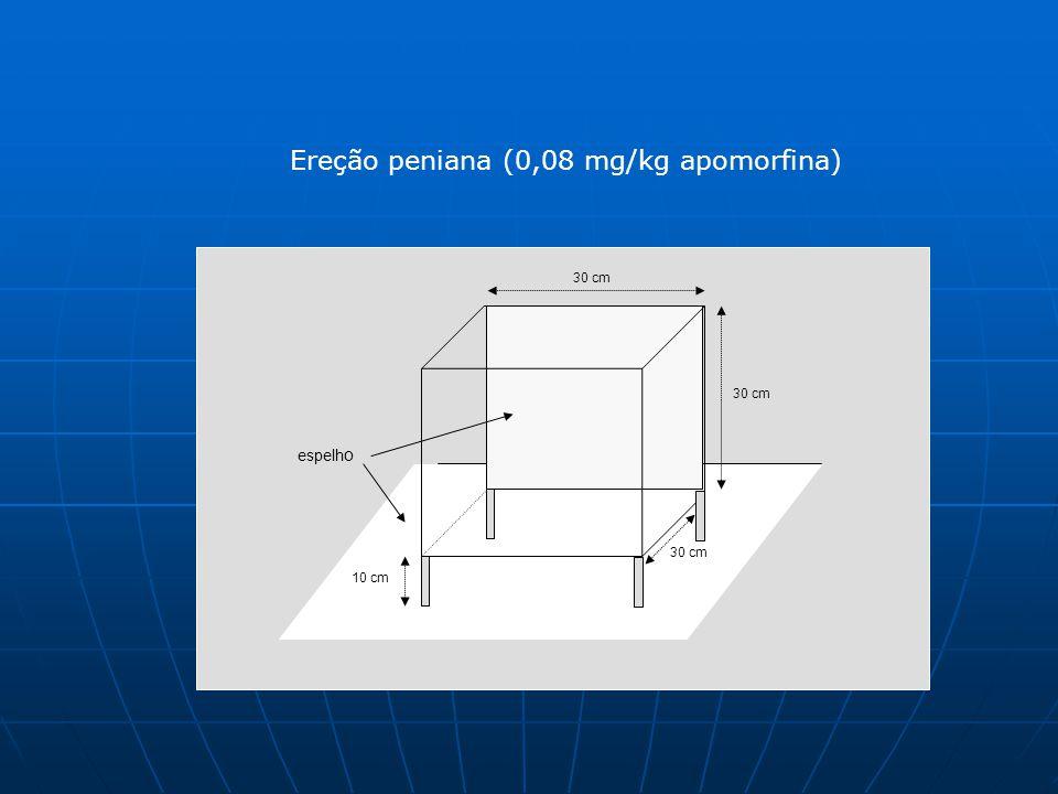 Ereção peniana (0,08 mg/kg apomorfina)
