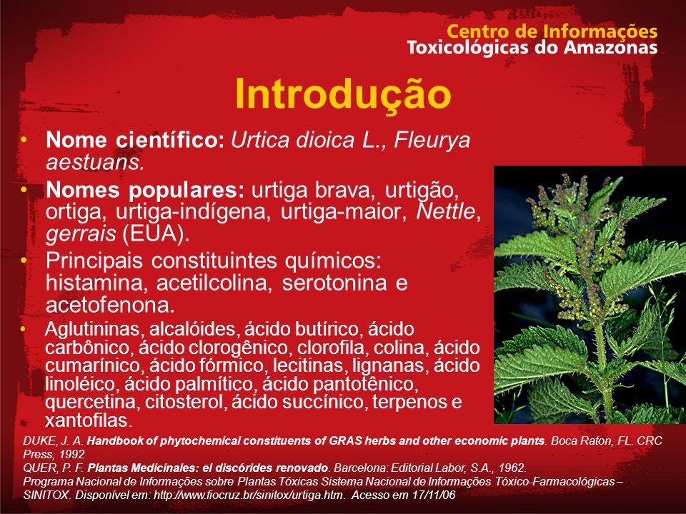 Introdução Nome científico: Urtica dioica L., Fleurya aestuans.
