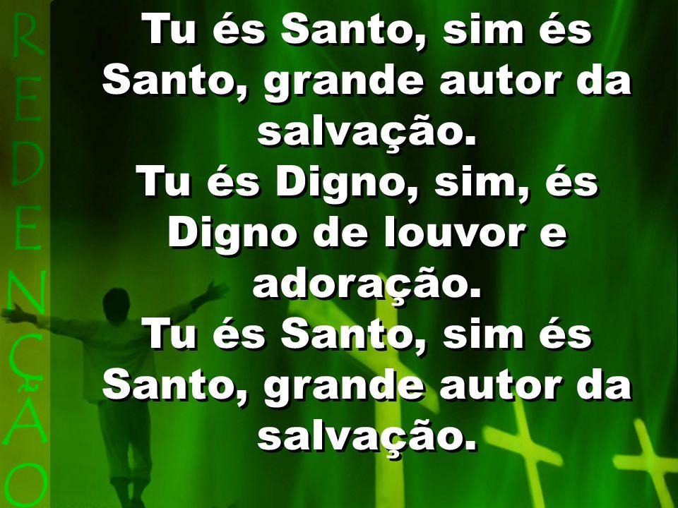 Tu és Santo, sim és Santo, grande autor da salvação.