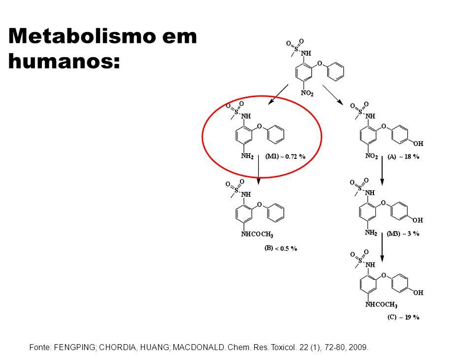 Metabolismo em humanos: