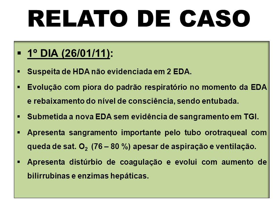 RELATO DE CASO 1º DIA (26/01/11):