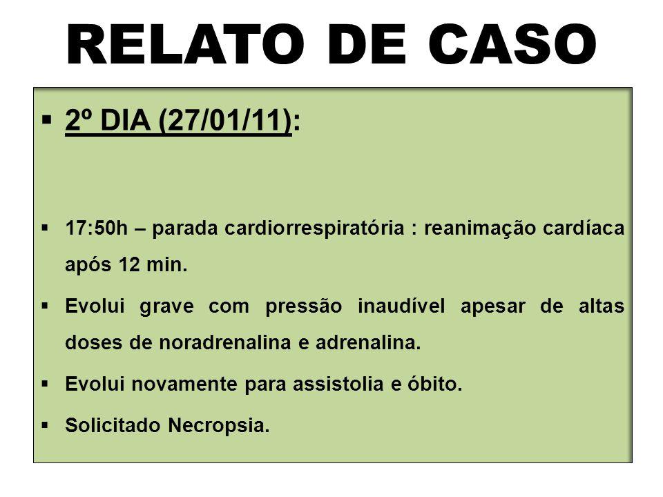 RELATO DE CASO 2º DIA (27/01/11):
