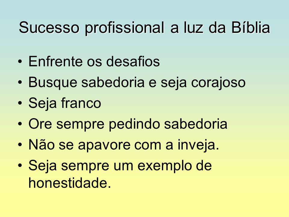 Sucesso profissional a luz da Bíblia