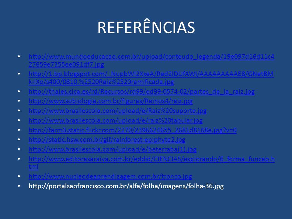 REFERÊNCIAS http://www.mundoeducacao.com.br/upload/conteudo_legenda/19e097d16d11c427659e7355ee091df7.jpg.