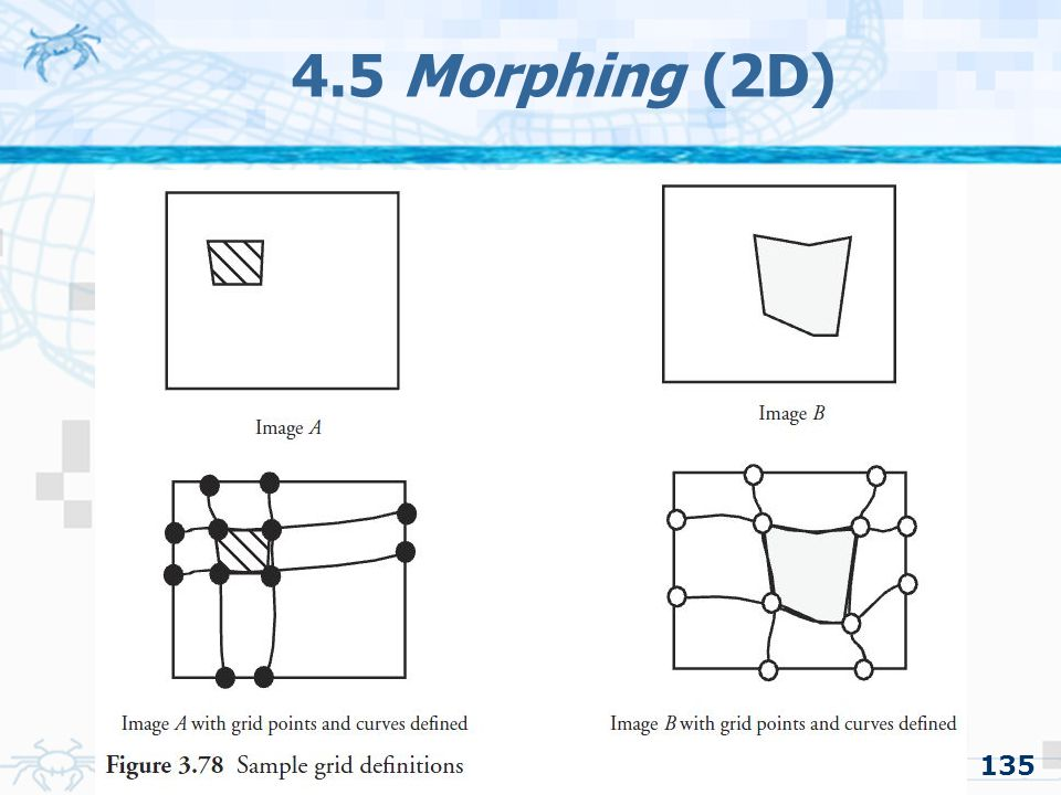 4.5 Morphing (2D) 135