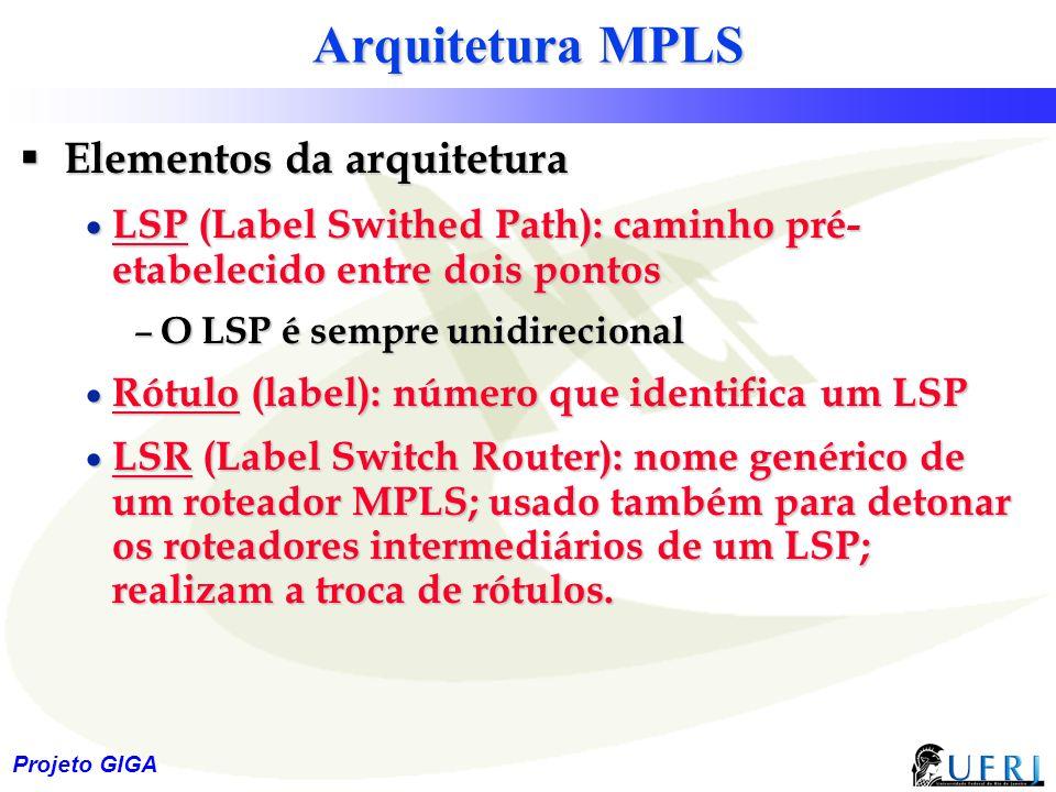 Arquitetura MPLS Elementos da arquitetura