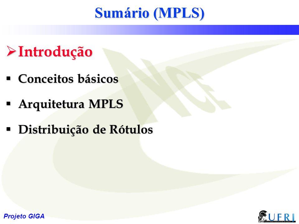 Sumário (MPLS) Introdução Conceitos básicos Arquitetura MPLS
