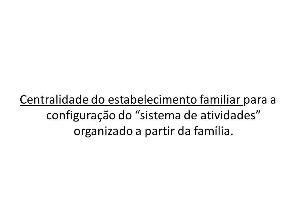 Centralidade do estabelecimento familiar para a configuração do sistema de atividades organizado a partir da família.