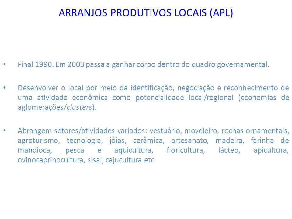 ARRANJOS PRODUTIVOS LOCAIS (APL)