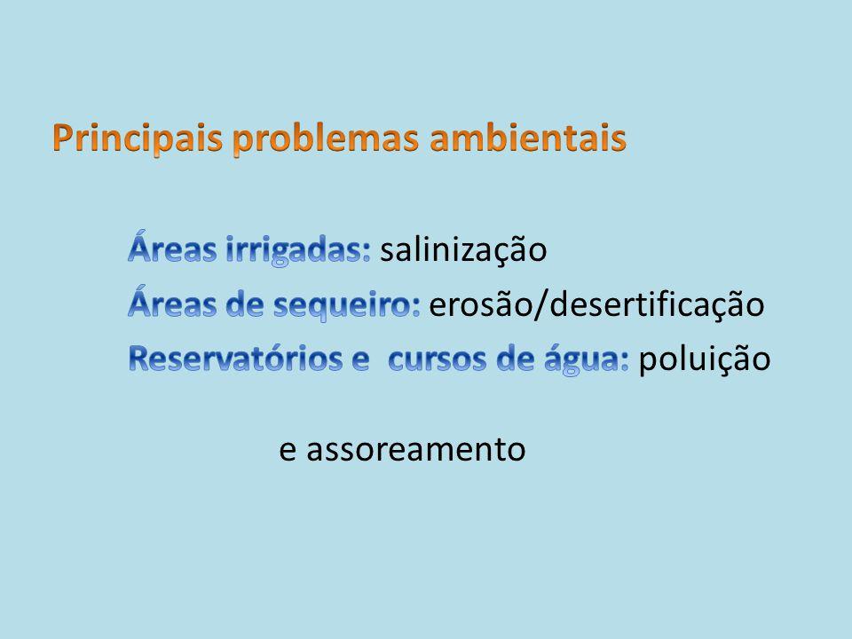 Principais problemas ambientais