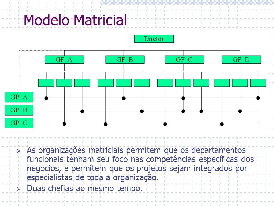 Modelo Matricial