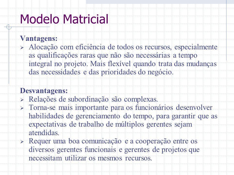 Modelo Matricial Vantagens: