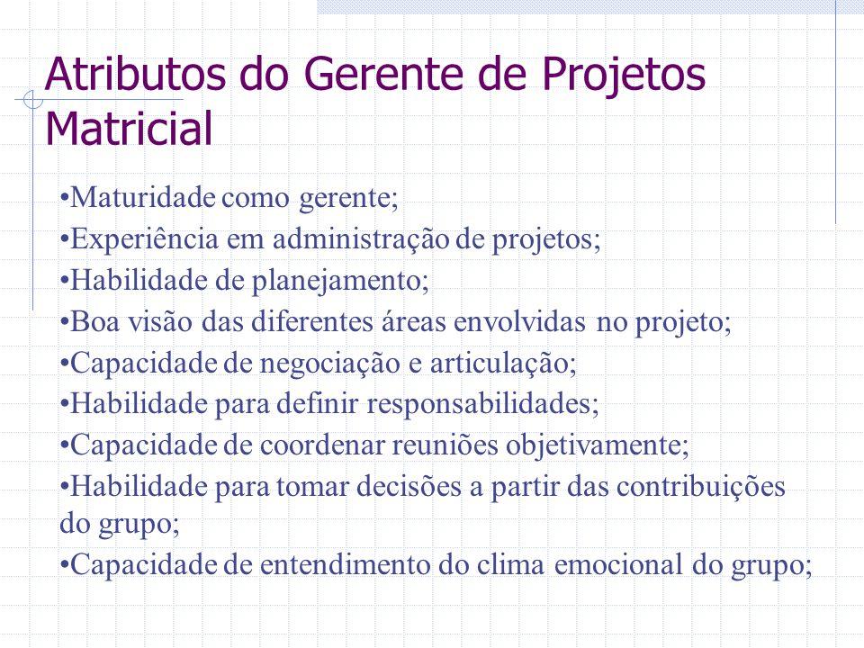 Atributos do Gerente de Projetos Matricial