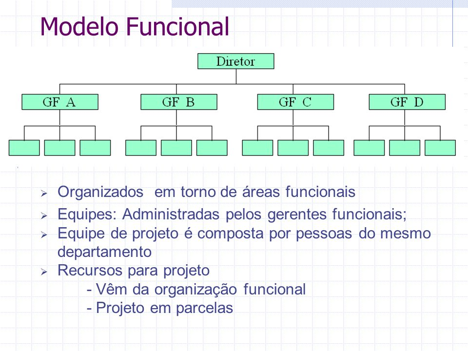Modelo Funcional Organizados em torno de áreas funcionais