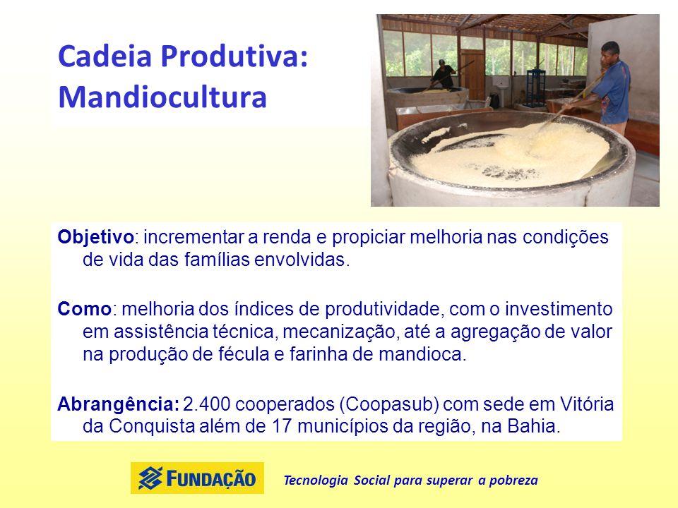 Cadeia Produtiva: Mandiocultura