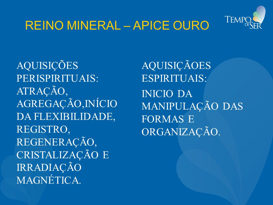 REINO MINERAL – APICE OURO