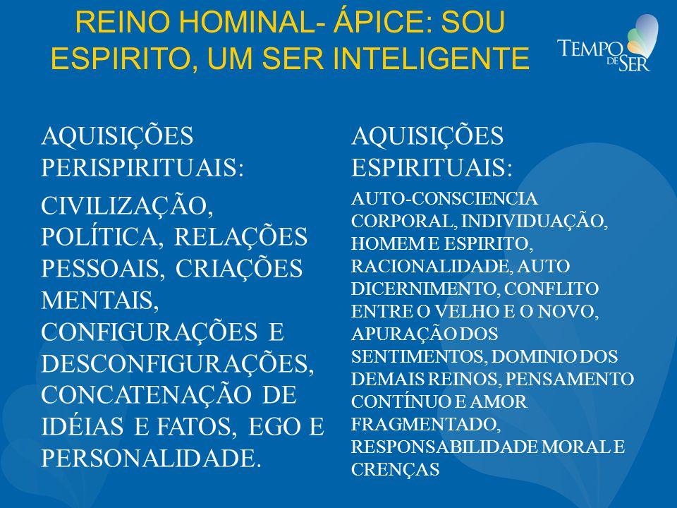 REINO HOMINAL- ÁPICE: SOU ESPIRITO, UM SER INTELIGENTE