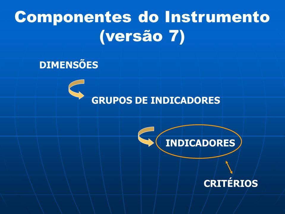 Componentes do Instrumento