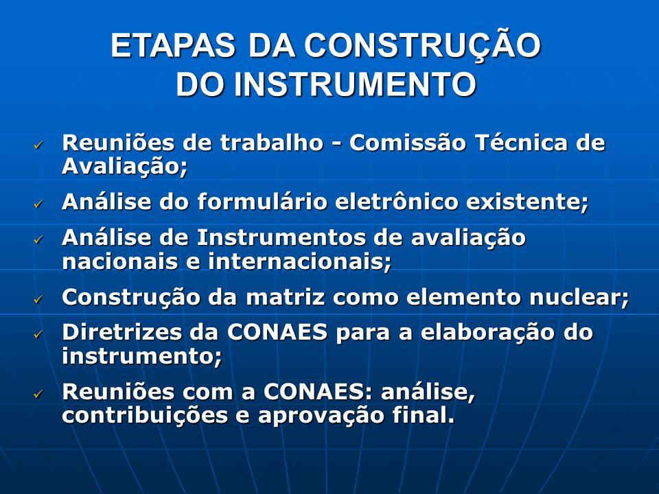 ETAPAS DA CONSTRUÇÃO DO INSTRUMENTO