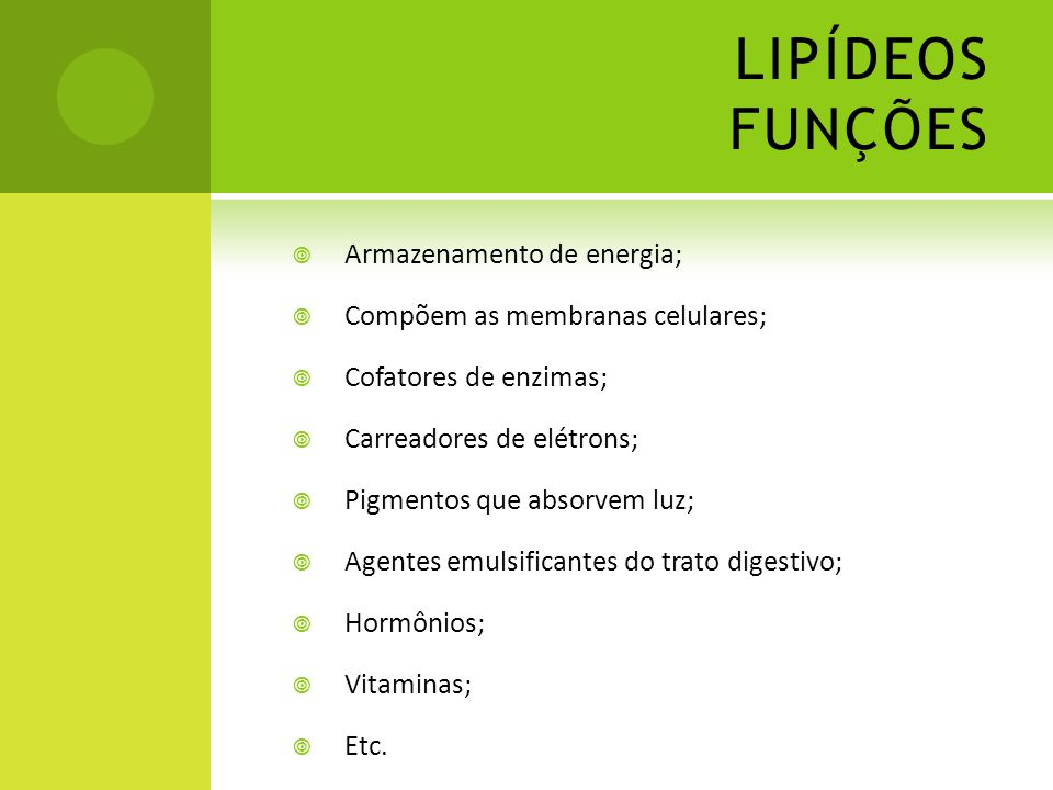 LIPÍDEOS FUNÇÕES Armazenamento de energia;