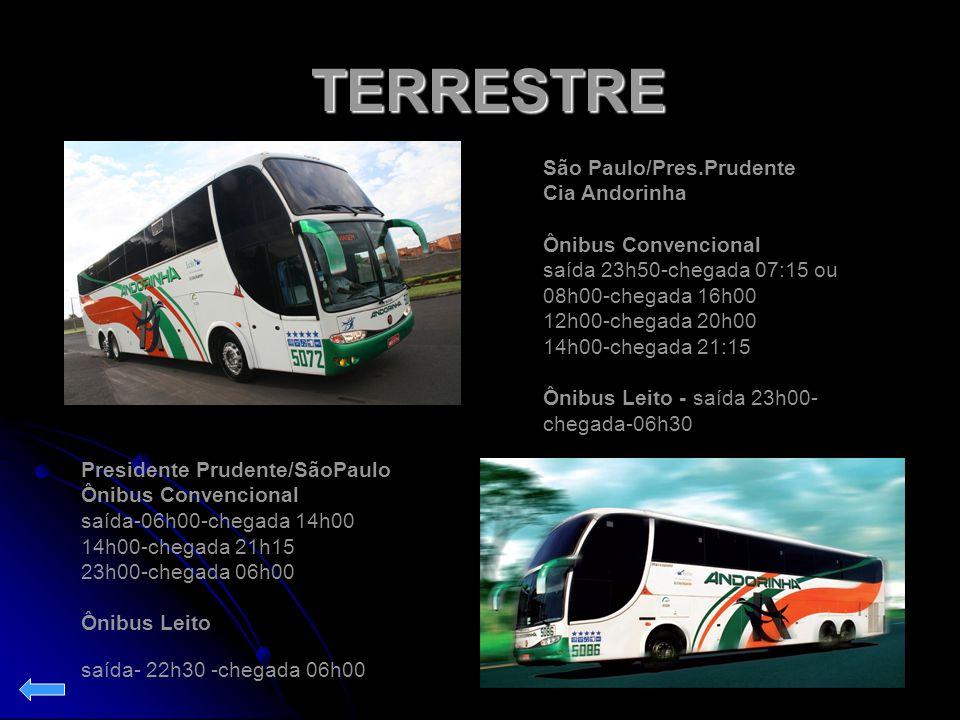 TERRESTRE São Paulo/Pres.Prudente Cia Andorinha